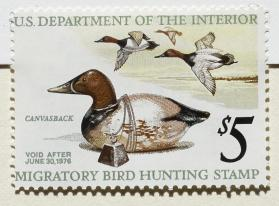 1975-76 Federal Duck Stamp; Canvasback Decoy